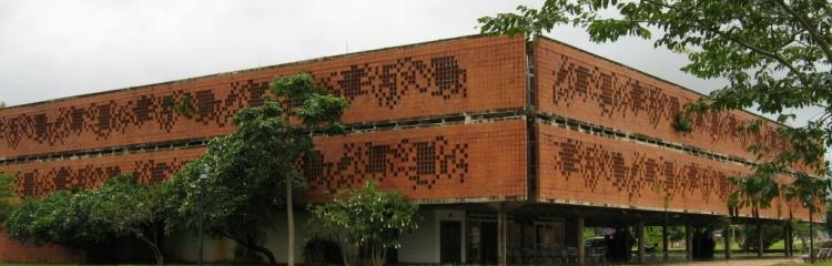 Diretoria - Biblioteca Central Santa Mônica - UFU